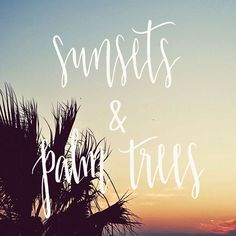 Summer nights  Day 156/365.  #sparkletters #handlettering #handletteringtype #typography #calligraphy #lettering #design #art #thedesigntip #thedailytype #typedaily #wordoftheday #photooftheday #365daysofhandlettering #sunsets #palmtrees