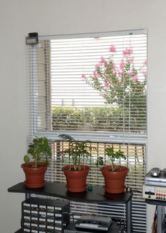 DIY with instructions: Automatic Window Blinds Controller (PICAXE) by biochemtronics Garden Gazebo, Balcony Garden, Blinds For Windows, Window Blinds, Window Coverings, Window Treatments, Motorized Blinds, Quirky Home Decor, Small Patio