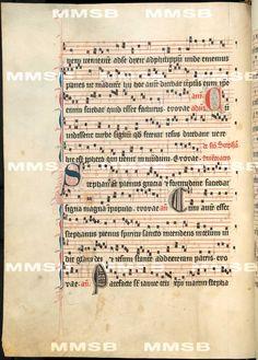 Antiphonarium Cisterciense. - Antiphon Queen Elizabeth Richensa. Date 1317 Sig: R 600  Folio 187v