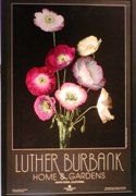 Luther Burbank Home & Gardens: The home, carriage house, greenhouse, and many gardens of horticulturist Luther Burbank