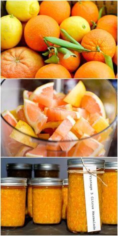 Vintage Three Citrus Marmalade recipe. Grapefruit, oranges and lemon combine to make a flavorful marmalade you'll use all year long! BoulderLocavore.com
