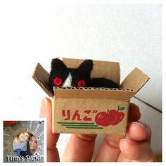 "Finn's Pick: Hiné Mizushima's ""Cat in a Box"" #felt #felted #knithacker #cat #love - follow her at @hine_art xoxo"