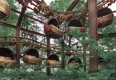 Abandoned amusement park ride.