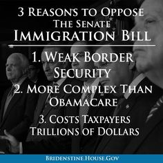 There are many reasons to oppose the Senate immigration bill. Let's start with these three...we already have immigration laws in place?