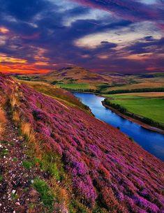 In Pent Hills, Scotland.