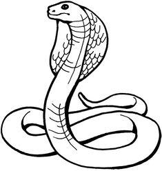 serpentcobraroyal Coloriage