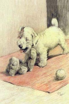 Sealyham Terrier DOG Cecil Aldin 1910