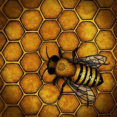 The Honey Bee by a.d.miller, via Flickr Look to the hard-working honey bee for guidance on how to live your life.