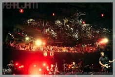 Pearl Jam 12/6/13 Seattle | Savoia Photography