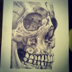 sketching, pencil approx 6 hours