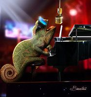Photoshop & piano!