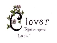 When Marty and I got married when we were 5 I had a clover bouquet. I love that when you pull the C it says Lover.