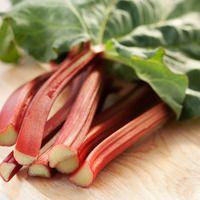Des recettes pour profiter pleinement de la rhubarbe