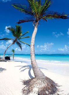 somewhere in Caribia