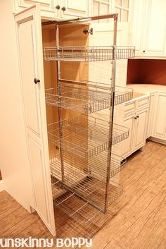 small pantry..great storage, better than individual sliding maybe.....