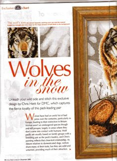 wolves in the snow Cross Stitch Needles, Cross Stitch Charts, Cross Stitch Designs, Cross Stitch Embroidery, Cross Stitch Patterns, Wolf Eyes, Cross Stitch Collection, Wild Wolf, Cross Stitch Pictures