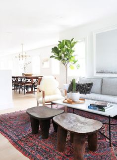 Pair of African stools in a living room with a beautiful ficus tree.