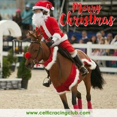 Me and Rocco did a Christmas costume class at the show and it was so much fun! It was and this was our costume! Cute Horses, Horse Love, Beautiful Horses, Funny Horses, Beautiful Cats, Horse Halloween Costumes, Christmas Costumes, Christmas Horses, Christmas Animals