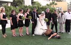 When They Put Their Dog in the Wedding, They Probably Didn't Expect Him To Do This!