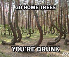 Go home trees