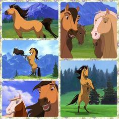 Spirit, Stallion of the Cimarron - animation - 2002 Dreamworks Animation, Disney And Dreamworks, Animation Film, Disney Animation, Spirit The Horse, Spirit And Rain, Spirit Der Wilde Mustang, Wilde Mustangs, Spirit Drawing