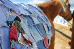 Blue Jean Western Saddle Blanket horse metal by annetteswhimsies Horse Rugs, Saddle Blanket, Saddles, The Ranch, Horse Stuff, Tack, Blue Jeans, Westerns, Diy Ideas