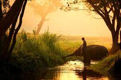 Fotograf Untitled von vokeng Prateep Duangkaew auf 500px