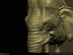 elephant face , amruth raju on ArtStation at https://www.artstation.com/artwork/RnN3v