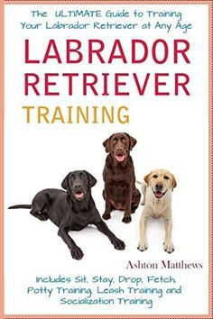 Labrador Retriever Training: The Ultimate Guide to Training Your Labrador Retriever at Any Age: Includes Sit Stay Drop Fetch Potty Training Leash Training and Socialization Training