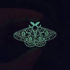 Black Glow Moth Pin – Caitlin Stout