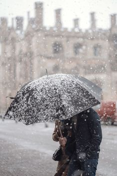 person holding black umbrella photo – Free Snow Image on Unsplash Hd Photos, Stock Photos, Black Umbrella, Head In The Sand, Xmax, Winter Pictures, Dark Skies, Light Therapy, Best Vibrators
