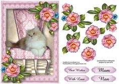 Cute Cat Camellias on Craftsuprint designed by Anne Lever - This lovely topper features a gorgeous cat reclining on an elegant chair, and is embellished with fabulous camellias. It has decoupage and four greetings. The greetings are best wishes, with love, mum and nan.  - Now available for download!
