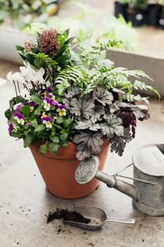 How to make a winter hardy container for the garden.