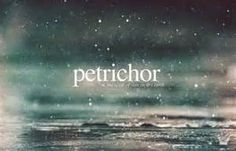 Petrichor: The scent of rain on dry earth or pavement. | The word is constructed from Greek, petra, meaning stone + ichor. I never knew there was a word for this!!