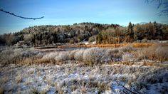 naturensdronning: Sol og kaldt