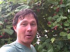 Tour of private permaculture forest with John from Growing Your Greens. Love this guy!