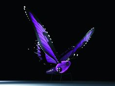 Mariposa 3d -