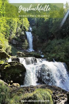 A truly impressive spectacle of nature in a beautiful surroundings. These are the Giessbach Falls, which tumble into the Lake Brienz near Interlaken. Travel With Kids, Family Travel, Travel Tips, Travel Destinations, Usa Places To Visit, Walking, Road Trip Usa, Switzerland, Travel Inspiration