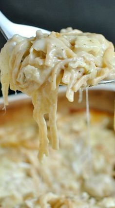 Tip Top Recipes: Cheesy, Chicken Tetrazzini. One of our favorite meals, perfect for serving a crowd too! EASY and DELISH! this would be easy for John. Chicken Tetrazinni, Chicken Tetrazzini Recipes, Creamy Turkey Tetrazzini Recipe, Top Recipes, Great Recipes, Cooking Recipes, Favorite Recipes, Recipies, Easy Recipes
