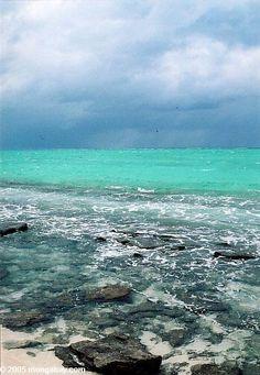 Heron island beach, Australia Perspective