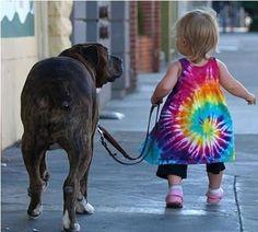 baby walking a pit bull