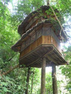 Finca Bellavista is a self-sustaining community inthe jungles of Costa Rica