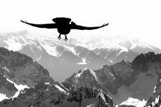 Adventure over the Alps Photo by Veronika K-Ko -- National Geographic Your Shot