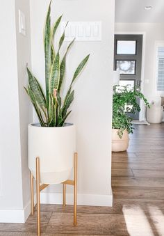 Budget Friendly Pots For Indoor Plants - Sprucing Up Mamahood Living Room Plants Decor, House Plants Decor, Plants For Room, Office With Plants, Living Room Corner Decor, Scandinavian Style Home, Scandinavian Interior, Interior Plants, Interior Design