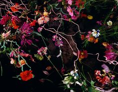 Margriet Smulders Summer's Lease, 2012, 125 cm x 159 cm and 75 cm x 95 cm