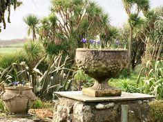 West Cornwall, Farm Gardens, Terrace, Wildlife, Seasons, Plants, Balcony, Patio, Seasons Of The Year