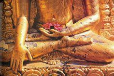 Golden Buddha Statue in meditation by elefantpeople on Etsy