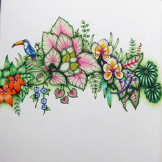 I actually finished a (small) page! Swipe for close-ups. I have a lot to learn about backgrounds, but at least I'm getting better at… Magical Jungle Johanna Basford, Coloring Tutorial, Color Pencil Art, Coloring Book Pages, Types Of Art, Colored Pencils, Sleeve Tattoos, Backgrounds, Instagram