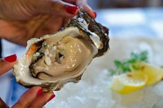 Visitor's Guide to Knysna Knysna, Feature Article, Oysters, Ice Cream, Breakfast, Desserts, Food, No Churn Ice Cream, Morning Coffee