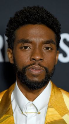 "Chadwick Boseman attends the Bridges"" New York Screening Black Panther Art, Black Panther Marvel, Jackie Robinson, James Brown, Carolina Do Sul, South Carolina, African American Actors, Black Panther Chadwick Boseman, Avengers"